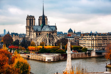 Wall Mural - Aerial view of Notre Dam Cathedral with Seine river in autumn in Paris, France