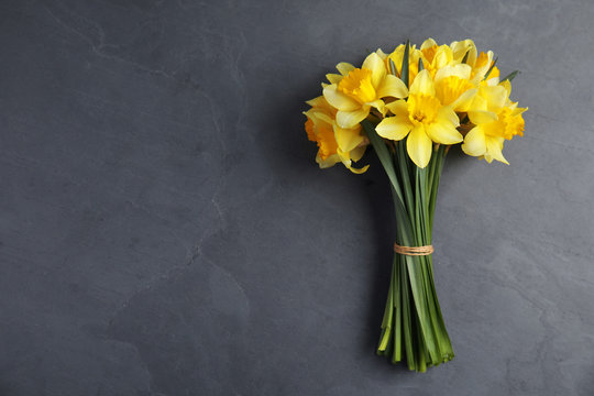Bouquet of daffodils on dark background, top view with space for text. Fresh spring flowers