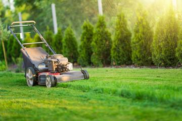 Lawn mower cutting green grass in sunlight