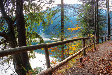 synevyr mountain lake in autumn evening. beautiful nature scenery of carpathian mountains. fallen foliage. wooden fence along the path around the body of water