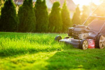Lawn mower cutting green grass in sunlight