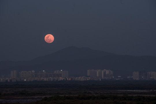 Pink Moon . Pink Moon April