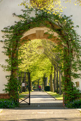 Eingang Friedhof Darmstadt Eberstadt