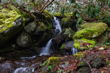 Cascading waterfall in Great Smoky Mountains National Park Wall mural