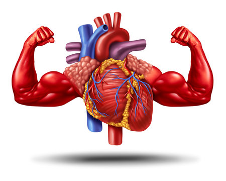 Strong Healthy Heart