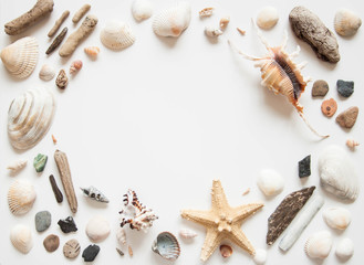 White light background with seashells and sea stars for the site frame for text. Journey to the sea is a memory. Wall mural