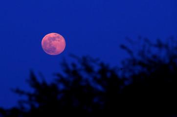 A full moon rises in Northampton