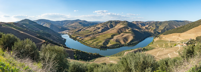 View of the terraced vineyards in the Douro Valley
