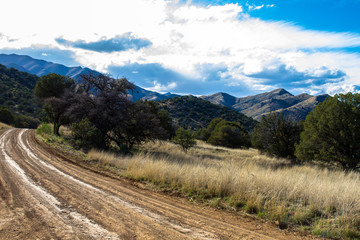 View from Portal-Paradise road in Arizona's Chiricahua Mountains