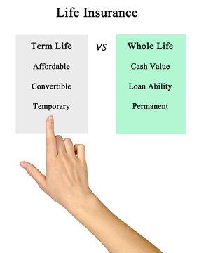 Life Insurance: term life vs whole life
