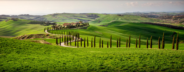 Tuscan hill with row of cypress trees and farmhouse at sunset. Tuscan landscape. Italy Fototapete