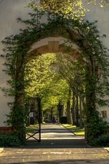 Eingangstor zum Friedhof Darmstadt Eberstadt