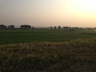 Sunset over Field near Mandalay, Myanmar