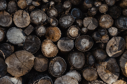 Background of stacked logs,logs.Ecological method of heating.