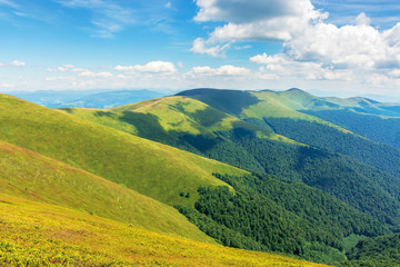 beautiful summer landscape in mountains. ridge rolling in the distance. sunny weather. fluffy clouds on the blue sky. wonderful nature background. location carpathians, borzhava