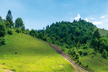 path uphill in to the mountains. summer countryside landscape. grassy meadow and forest on the slope. sunny weather in dappled light