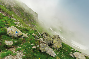 hiking uphill in the fog. huge boulders on a grassy slope. mysterious nature scenery. bad weather condition. extreme tourism concept