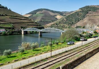 Douro Valley, wineyard around the Douro River, Portugal