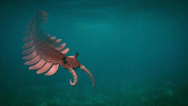 Anomalocaris, creature of the Cambrian period (3d paleoart illustration)