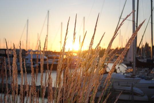 Sunset Bellingham Marina 02