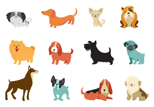 Dogs - collection of vector illustrations. Funny cartoons, different dog breeds, flat style