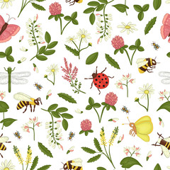 Vector seamless pattern of wild flowers, bee, bumblebee, dragonfly, ladybug, moth, butterfly. Repeating background with meadow or field insects, acacia, heather, camomile, buckwheat, clover, melilot
