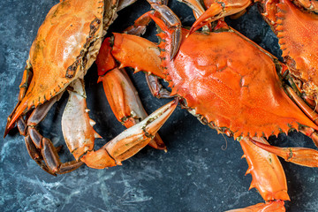 steamed whole blue crabs on wet marble background flat lay