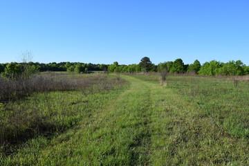 Natchez Trace Trail through grassland in Mississippi