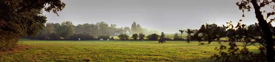 UK, Surrey rural landscape panorama