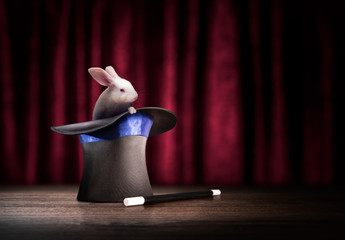 Wall Mural - high contrast image of a magician hat and a rabbit on a wooden background