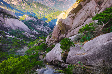 Photo sur Toile Lavende Yellow Mountains Huangshan, Anhui Province in China.