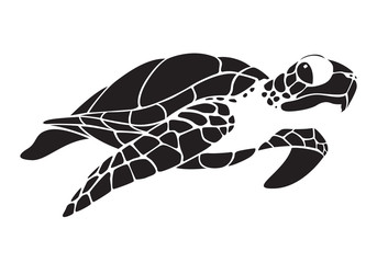 graphic turtle, vector