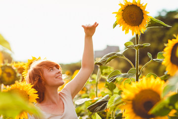 red-haired girl is standing next to a tall sunflower, a woman measures the height of a sunflower, her hand is lifted up Wall mural
