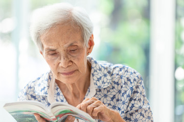 Asian senior woman reading a book relaxed at home,elderly woman spend their free time reading book