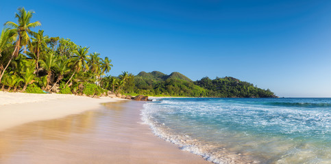 Fototapete - Panoramic view of paradise beach. Sunny beach with palms and turquoise sea.
