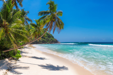 Fototapete - Sunny beach with palm trees and turquoise sea in Jamaica Caribbean island.