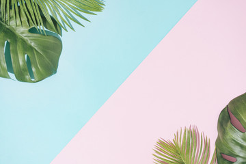 Wall Mural - Tropical background with pastel pink and blue copy space. Minimal summer concept. Flat lay.