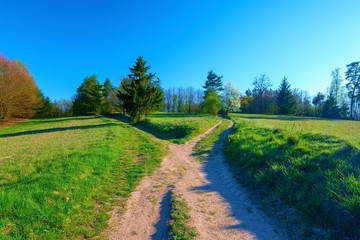 a path splits at a crossroads