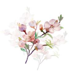 Watercolor spring tree branch.