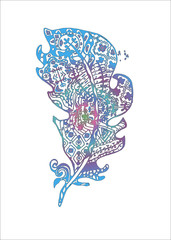 Color illustration with stylized feathers with doodle patterns.