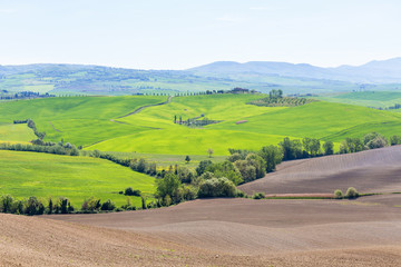 Tuscan landscape view in the spring