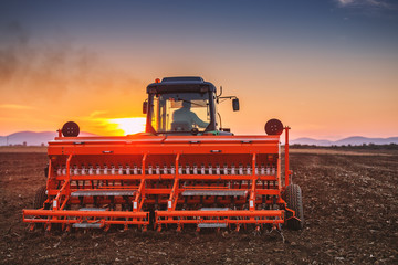 Wall Mural - Beautiful sunset, farmer in tractor preparing land with seedbed cultivator
