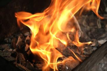 Close up of an campfire at night