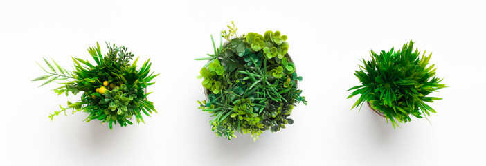 Artificial grassy plants in pots on white background