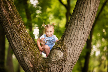 A pretty little blonde girl in blue trouses on a large spreading tree. Children and science.