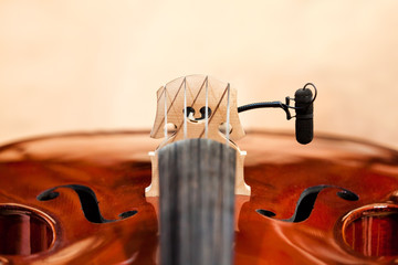 Wall Mural - Fragment of a violin with a microphone closeup