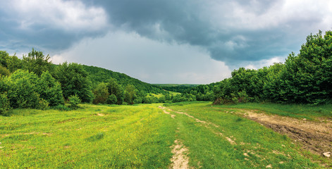 panorama of a summer countryside in mountains. path through meadow between forest. cloudy sky before the storm