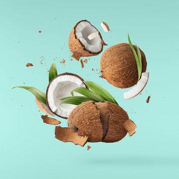 Fresh ripe coconut isolated