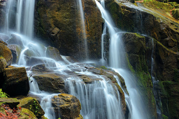 streams and cascades of waterfall. beautiful nature background. huge mossy wet rocks. close up shot
