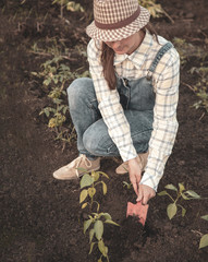 Woman in the garden makes planting seeds
